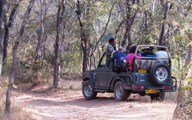 Now, full day and half day safaris will be conducted in zones 6 to 10 of Ranthambore, while zones 1 to 5 will be for a scheduled safari time