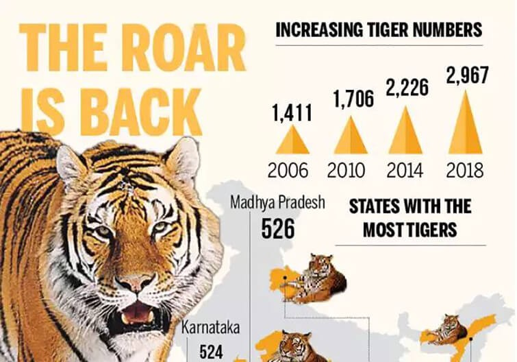 Number of tigers in India