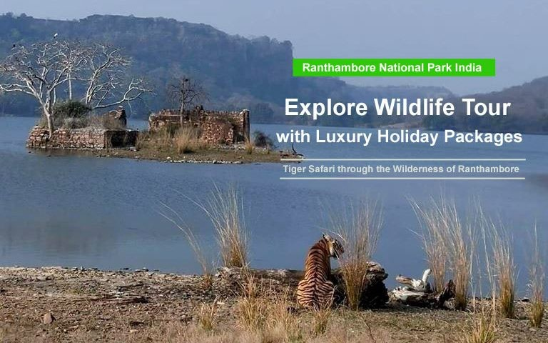 Ranthambore-Luxury-Holiday-wildlife-packages