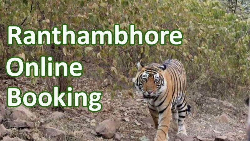 Ranthambore-online-Booking